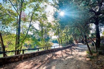 La ribera del río se repoblará con árboles y arbustos autóctonos en otoño