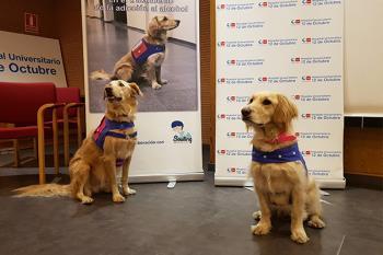 El Servicio de Psiquiatría del Hospital 12 de Octubre pionero en la terapia asistida con animales en el tratamiento y rehabilitación de pacientes alcohólicos