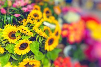 El barrio Salamanca celebra su florido mercado callejero este sábado