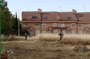 Además, solicita a la Comunidad de Madrid y a lo propietarios de fincas privadas que realicen esta labor