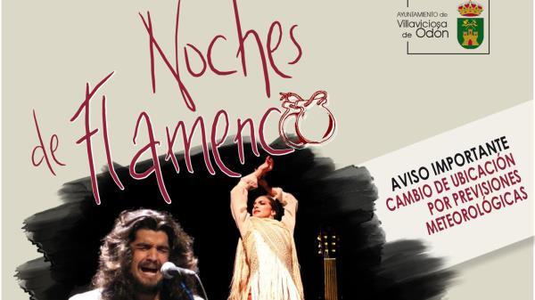 Amantes del flamenco, esta es vuestra cita estrella en Villaviciosa de Odón