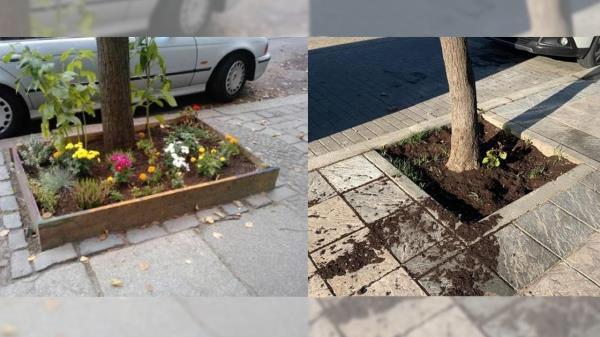 Varios centros del municipio participaban en un proyecto en favor de la biodiversidad urbana que se ha visto dañado por parte de algún desconocido
