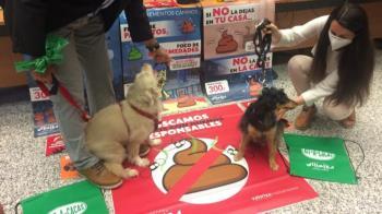 """Collado Villalba lanza una campaña sobre """"la tenencia responsable y recogida de excrementos caninos"""""""