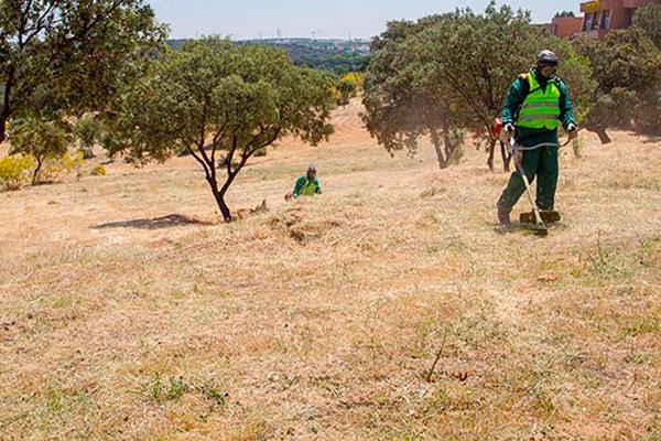 Boadilla recuerda la importancia de mantener limpios los solares y terrenos