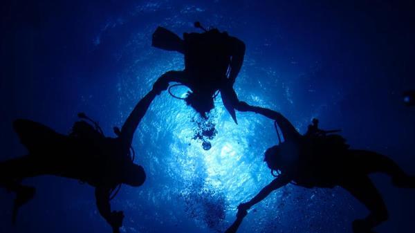 Descubre grandes tesoros bajo el mar