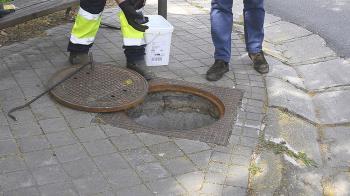 El Ayuntamiento de Boadilla realiza cuatro campañas anuales de desratización y desinsectación