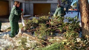 Con este reconocimiento los más afectados podrán acceder a ayudas para reparar los daños causados por la nevada