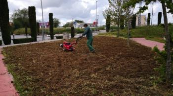Se quiere mejorar la zona de jardines