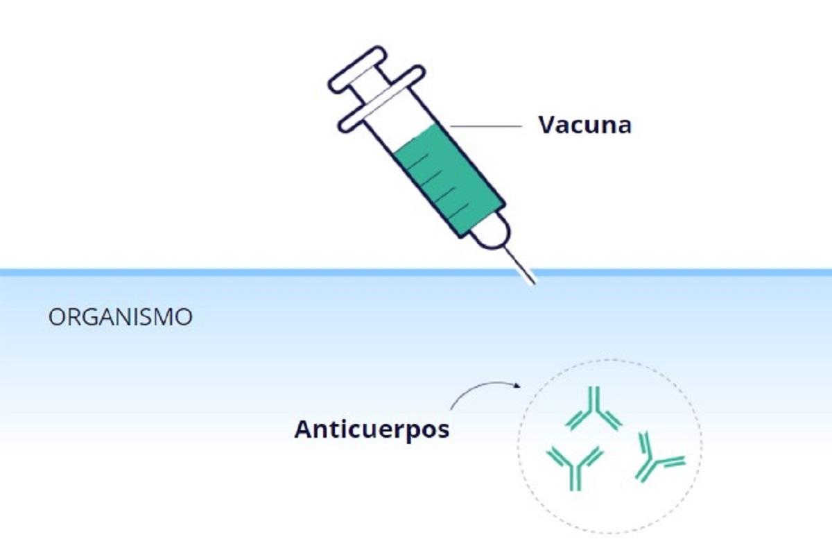 En este artículo resolvemos algunas dudas más frecuentes sobre esta vacuna