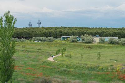 Lee toda la noticia 'Coslada celebra una jornada de riego y mantenimiento en el Parque del Humedal'