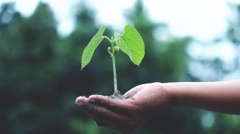 Desarrollan objetivos contra el Cambio Climático