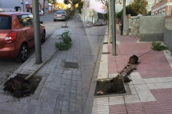 La Policía Local denuncia un acto vandálico