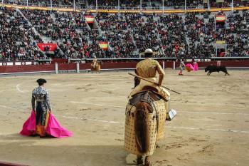El grupo político de Alcalá presentó una moción el año pasado para que se aprobaran los eventos taurinos