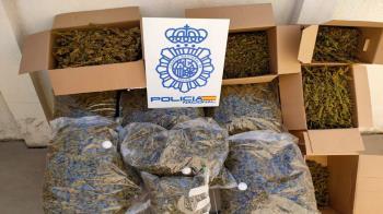 La investigación se inició por parte de la Brigada Local de Policía Judicial en colaboración con la Brigada Provincial de Policía Judicial de Madrid