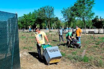 Alcalá crea nuevas colmenas en la Isla del Colegio y aprovecha para poner en marcha una campaña informativa dirigida a los jóvenes
