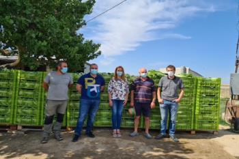 Desde la Huerta Experimental han logrado reunir esa cantidad para familias vulnerables desde 2017