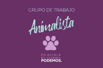 Destacan la descoordinación que ha habido en la Comunidad de Madrid