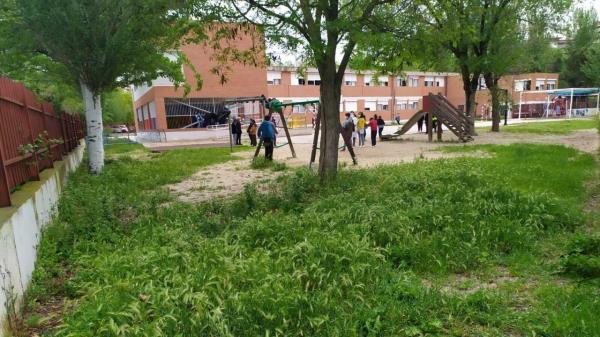 El PP exige la limpieza de los patios de los colegios