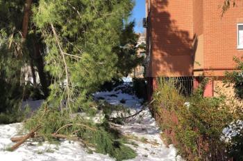 Otros municipios ya lo han hecho debido a los daños del temporal