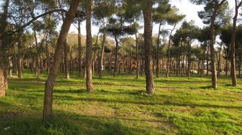 Tres grandes parques de Leganés siguen cerrados desde Filomena