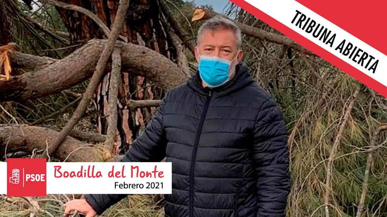 Opinión | El portavoz del PSOE, Alfonso Castillo, reflexiona sobre el Monte de Boadilla