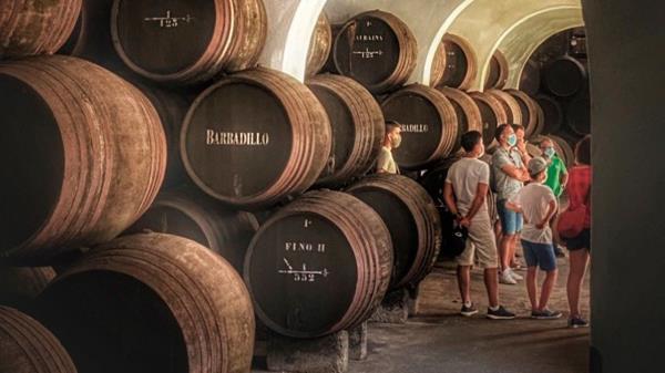 Disfruta de los vinos de Jerez en un entorno incomparable