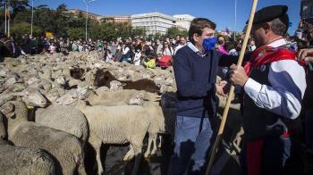Con el pago de 50 maravedíes al alcalde, los pastores y sus rebaños han conmemorado la ley que protege las vías pecuarias de España.