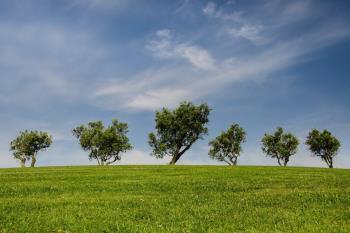 Arco Verde es un proyecto de Corredor Verde circular de más de 200 km de naturaleza por la Comunidad de Madrid