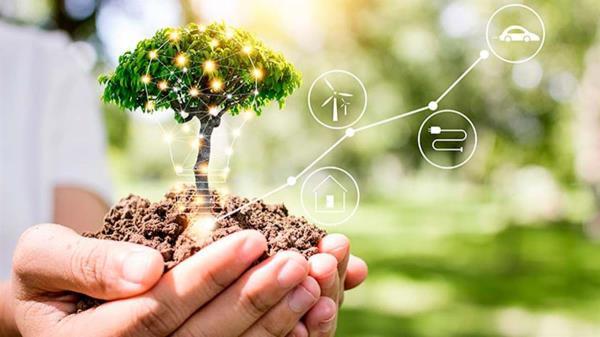 El camino que muchas empresas cogen hacía la sostenibilidad