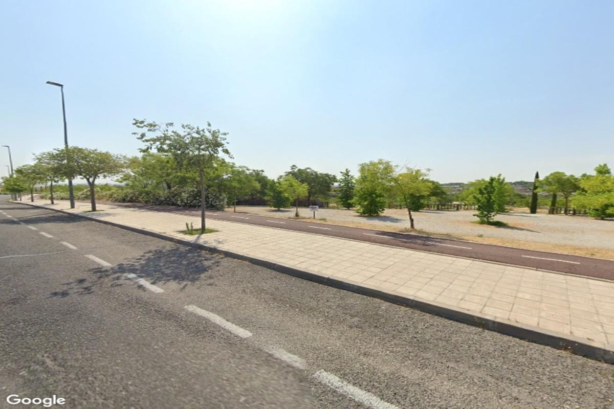 Un total de 3.924 árboles de la localidad estarán presentes en el dispositivo de conservación de la ciudad