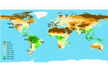 Un estudio en el participa la UAH ha determinado que aumentar el numero de especies no siempre se traduce en una mayor retención de CO2