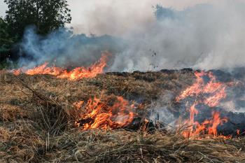 Protección Civil Villaviciosa de Odón ha colaborado en estas medidas
