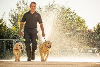 Más de 3.200 perros guías han sido entregados desde su creación
