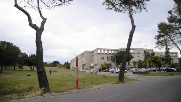 La parcela anexa al centro comercial Las Lomas es la ubicación final para la plantación de árboles