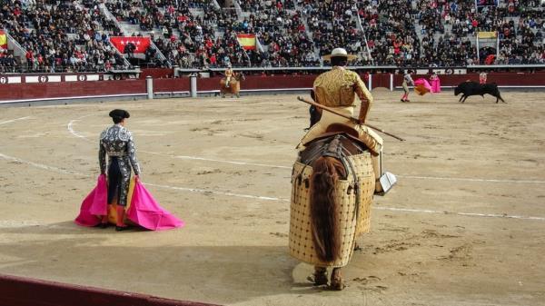 IU Alcalá pide modificar el contrato para que en ese espacio se puedan desarrollar otro tipo de espectáculos y eventos