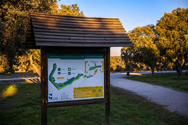 La concejalía de Deportes lanza un mapa interactivo para que los loceños conozcan las instalaciones que están cerca de sus casas