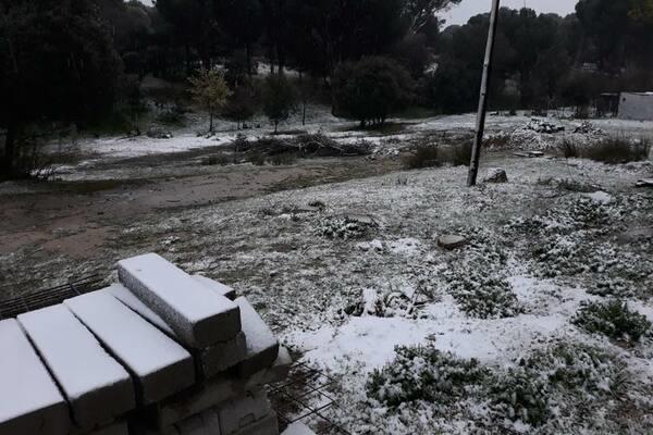 Las nevadas visten de blanco al Monte del Pilar en Majadahonda