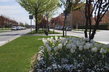 El Ayuntamiento ha recordado las medidas anticontagios frente a la Covid-19