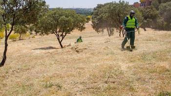El Ayuntamiento de Boadilla recuerda la obligación de desbrozar y tener en buenas condiciones los terrenos y solares de particulares