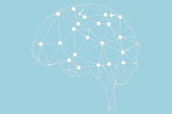 Hablamos del omega3 como combustible del cerebro y de las propiedades del romero y de la felicidad y la meditación para la calma