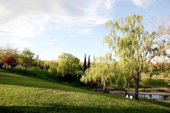 31 zonas verdes por las que los menores de 14 pueden disfrutar desde el pasado domingo