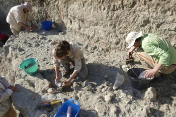 Según una investigación en la que participa la Universidad de Alcalá y que se desarrolla en la garganta de Olduvai, en Tanzania.