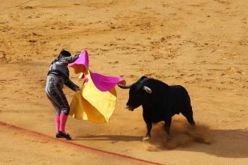 Varios grupos políticos y movimientos de la ciudad se han unido para expresar su rechazo ante el regreso de los toros