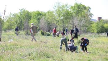 Se plantaron casi 200 arboles en la zona que ya estaba preparada para la jornada
