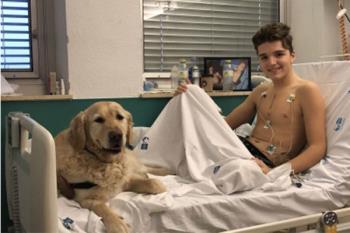 La terapia asistida con perros a niños ingresados en la UCI del Hospital 12 de Octubre