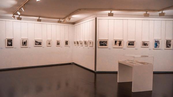 Naturaleza y la fotografía de Ontañón en las nuevas exposiciones del Centro Cultural Picasso