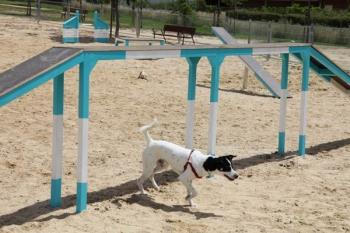 El ayuntamiento pretende mejorar la seguridad y la relación entre vecinos y mascotas
