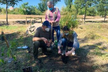 Labores que pertenecen al proyecto Arco Verde que conectará los tres parques regionales de la Comunidad de Madrid