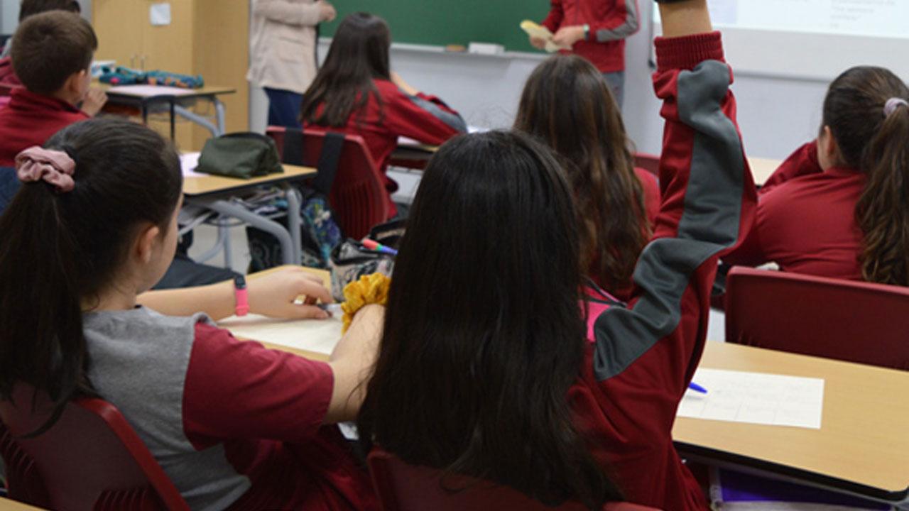 El proyecto ha sido organizado por el Ayuntamiento de Arroyomolinos y la Consejería de Educación de la Comunidad