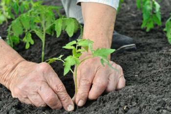 No se requiere inscripción y están dirigidos a personas que quieran formarse y desarrollar una actividad agraria